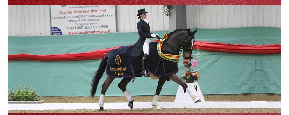 Stacey Munson Dressage